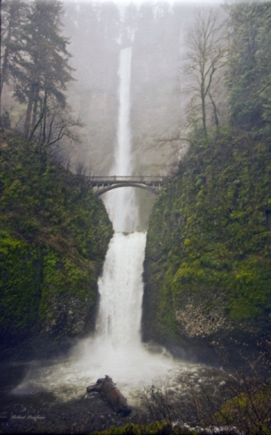 Multnomah Falls Photograph on Canvas - Richard Bagdonas